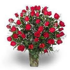 dozen of roses four dozen roses in albuquerque nm peoples flowers