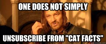 Cat Facts Meme - one does not simply unsubscribe from cat facts one does not