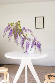 mysterious wisteria an irresistible flower goes from vine to vase