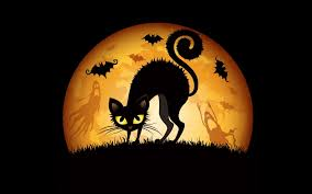 Halloween Cat Poem Black Cat Desktop Wallpapers Group 76