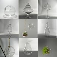 Small Vases Wholesale Glass Vases Wholesale Flowers And Supplies