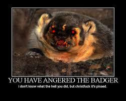 Badger Memes - evil badger memes memes pics 2018