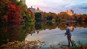 New York nature activities images 5 best things to do outdoors in new york jpg