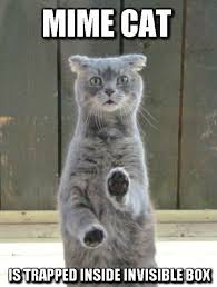 Invisible Cat Memes - mime cat cat humor