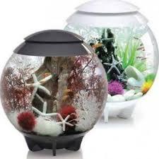 quality aquarium supplies biorb halo 30l