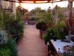 terrazze arredate foto terrazzi arredati con piante foto nanopress donna