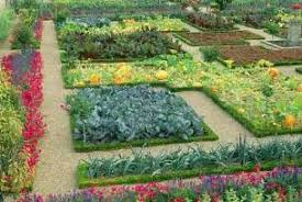 and easy small vegetable garden layout plans 4x8 with raised bed