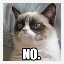 Grumpy Cat Meme No - grumpy cat meme no cross stitch pattern