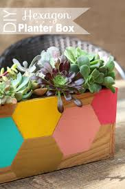 How To Make A Succulent Planter by 10 Fun Diy Projects With Succulent Plants