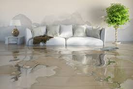 9 best water fire damage services images on pinterest flood