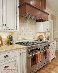 porte meuble cuisine brico depot meuble cuisine brico depot pdf pour idees de deco de cuisine élégant