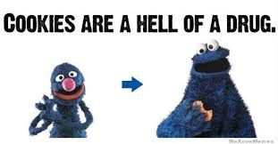 Cookie Monster Meme - oh cookie monster lol cookies are a hell of a drug brilliant
