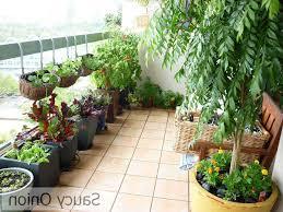 best of modern kitchen garden design 2017 of balcony garden looks