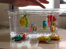aquarium with moving fish home design architecture