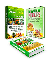 buy grow fruit indoors box set 33 fruits and veggies you can grow