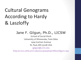 doing a cultural genogram hardy u0026 laszloffy