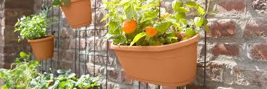 trellis supports trellis wall garden rack pot hooks plant