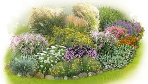 ornamental grasses garden plan