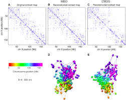Genome Mapping Manifold Based Optimization For Single Cell 3d Genome Reconstruction