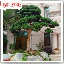 Artificial Plant Decoration Home 169 Best Artificial Plants Images On Pinterest Artificial Tree