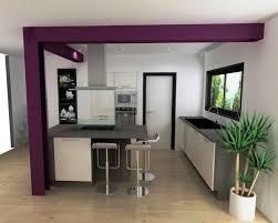 cuisine ouverte avec comptoir cuisine style américaine cuisine équipée bois foncé avec comptoir