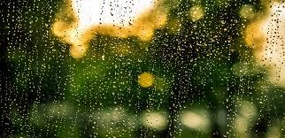 free stock photo of bokeh drops of water rain