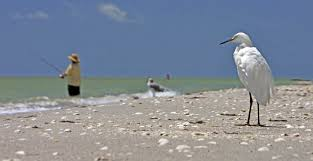 Sanibel Florida Map by Weekend Getaway Itinerary For Sanibel And Fort Myers Aarp