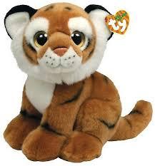 ty wild wild white tiger cub india 9