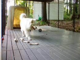 Kennel Mats Outdoor by K9 Kennel Basic Yard Kennel Raised Flooring System U0026 Reviews Wayfair