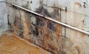 Global Basement Waterproofing by Top 10 Best Hartford Ct Waterproofing Contractors Angie U0027s List