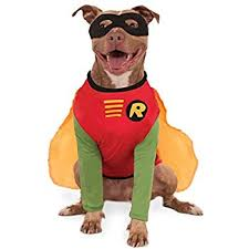 Halloween Costumes Large Dogs Amazon Batman Brave Bold Deluxe Pet Costume