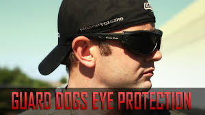 lifetime warranty eye protection guard dogs goggles and glasses