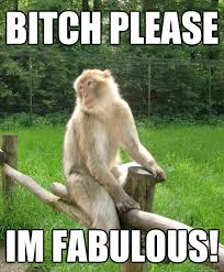 Funny Monkey Meme - bitch please im fabulous fabulous monkey quickmeme