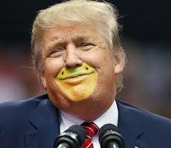 Smug Meme - smug trump frog photoshop by natemorebikes frogs and meme