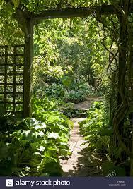 hidden sunlit garden and path viewed through wooden pergola and