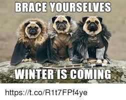 Winter Meme - brace yourselves winter is coming httpstcor1t7fpf4ye brace