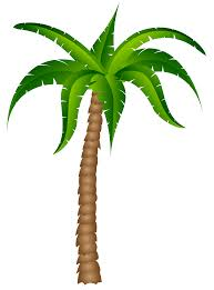 Pom Trees Palm Tree Clipart Clipartandscrap