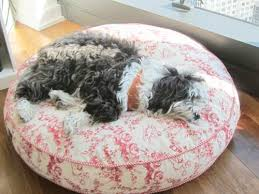 Barker Dog Bed Toile Dog Bed A Tomato In Tribeca