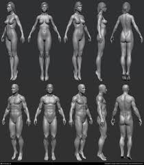 Female Anatomy Reference 79 Best Anatomy Images On Pinterest Drawing Tips Art Tutorials