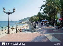 beach promenade palm trees santa eulalia des riu ibiza