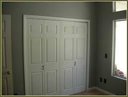 Painting 6 Panel Interior Doors Home Decor Inspiring Double Door Closet Captivating Double Door