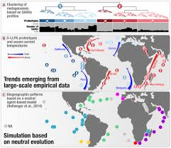 the global biogeography of amino acid variants within a single