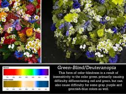 Red Blue Color Blindness See What Colorblindness Is All About