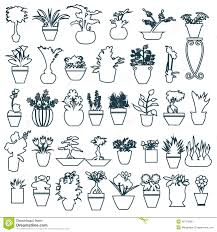 cute house plants in pots hand drawing stock vector image 49774266