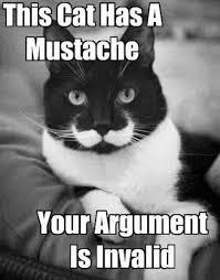 Your Argument Is Invalid Meme - argument invalid meme cat moustache w630
