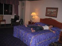 biggest bed ever the biggest bed ever oodles world surfari 2007 08