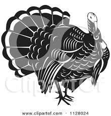 royalty free rf clipart of thanksgiving turkey birds