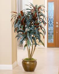 interior decorating idea u2013 create an indoor garden petals com blog