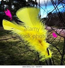 Easter Decorations Branches by Easter Decorations Branches Stock Photos U0026 Easter Decorations