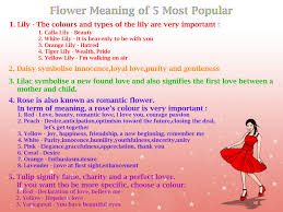 Meaning Of Pink Roses Flowers - different flowers and their meanings love u understand the